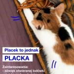 IMG_7085_placka